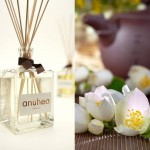 anbience fragrances white tea